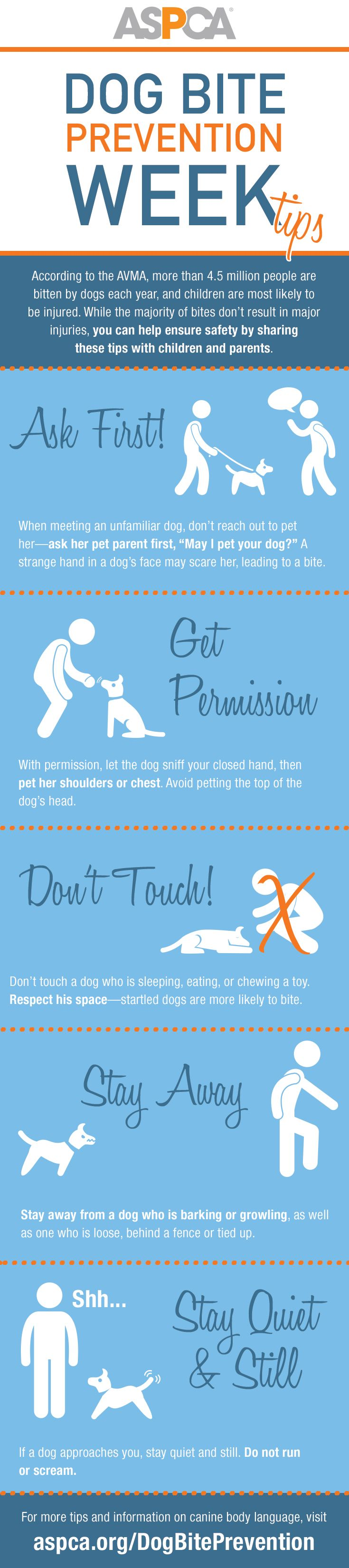 25 best ideas about dog years on pinterest age for Home safety facts