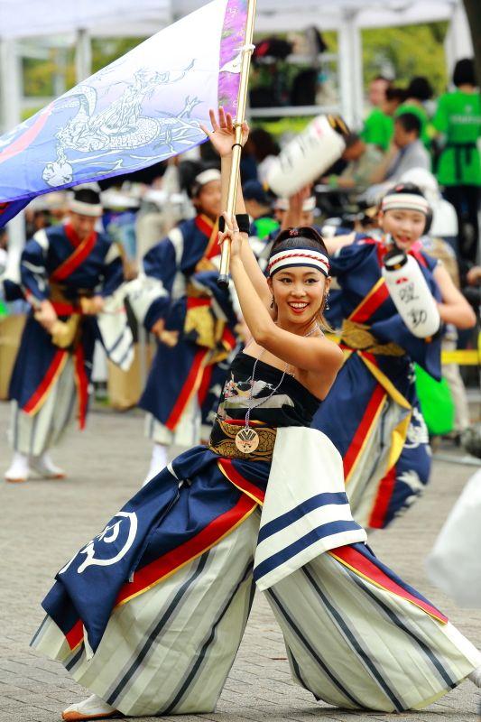 日本の夏 祭り よさこい スーパーよさこい2016 Japanese tradition