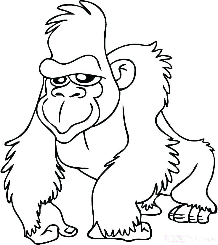 Jungle Animals Coloring Pages Babyjungleanimalscoloringpages Cartoonjungleanimalscoloringpages Cutejungleanimalscoloringpages J Animal Coloring Pages Coloring Pages Coloring Pages For Kids