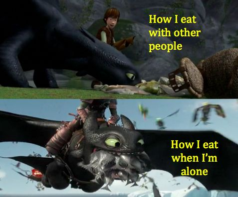 Image result for how to train your dragon memes