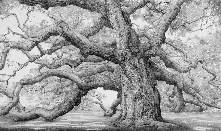 Charles Brindley - Angel Oak