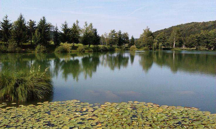 Lake Blato (Slovenia)