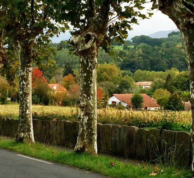 A stay in Sare, France in a one-street village in the heart French Basque Country, was extended to six weeks.