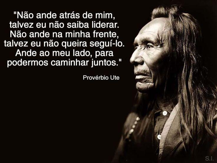 proverbios indígenas brasileiros - Pesquisa Google