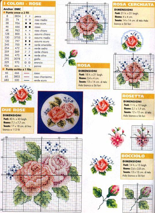 Gallery.ru / Foto # 18 - flores de rosas, el circuito en 1 hoja - irinika