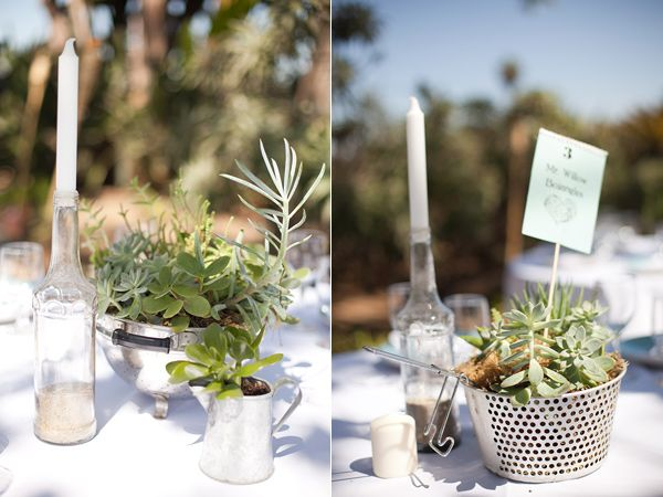 more succulent centerpieces in colanders and strainers! this is so C <3 G
