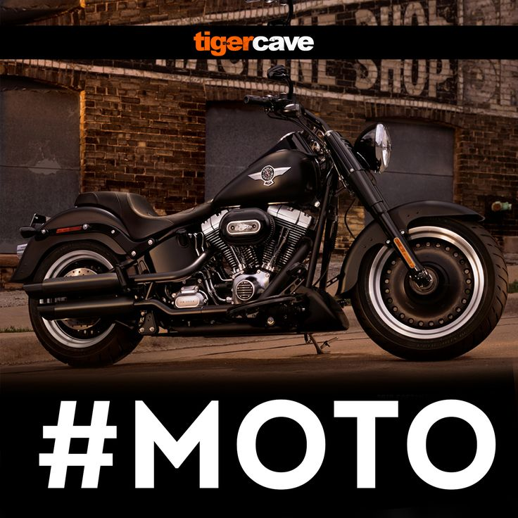#MOTO the Bikes I Ride #HarleyDavidson FatBoy! Аутентичный дизайн в стиле Fat Custom превосходно сочетается с двигателем High Output Twin Cam 103B  #HarleyDavidson #Bikes #Cruiser #Chopper #DeusExMachina #TigerCave #16тонн #ПрезентацияАльбома #Stardust #29ноября #Москва #KudaGo #КудаПойти #New #Studio #LiveConcert #Incubus #TheProdigy #Creed #JaredLeto #JoshGroban #ChrisDaughtry #Coldplay #Концерт #BerlinMusicAwards #MIA #Rockmusic