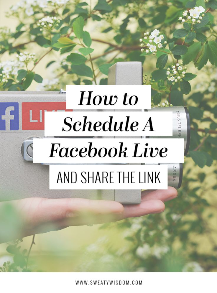 How to Schedule a #Facebook Live Ahead of Time and Share the Link! // Sweaty Wisdom