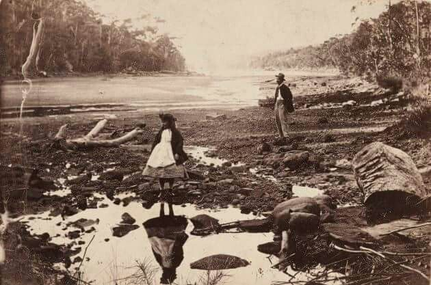 Middle Harbour,Port Jackson in 1865. Art Gallery of New South Wales.
