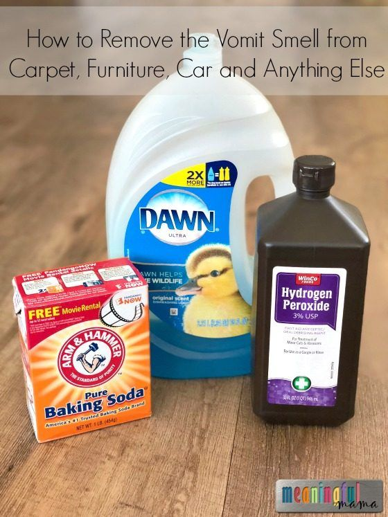 How To Remove The Vomit Smell From Carpet Furniture Car