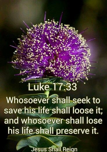 Luke 17:33 KJV | Bible quotes kjv, Just pray, Holy scriptures