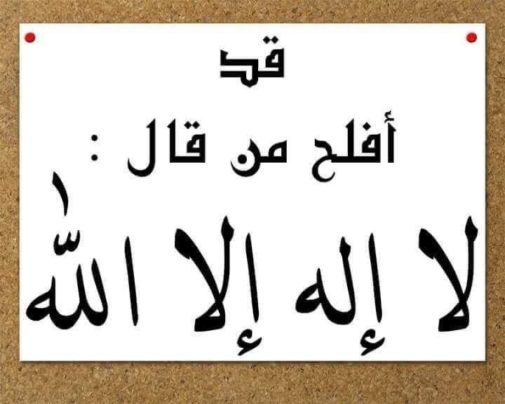 قد أفلح من قال لا اله اااااالا الله اذگار Arabic Calligraphy Calligraphy