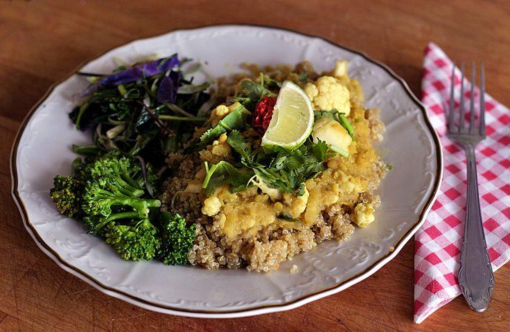 Květákové curry s červenou čočkou | Veganotic