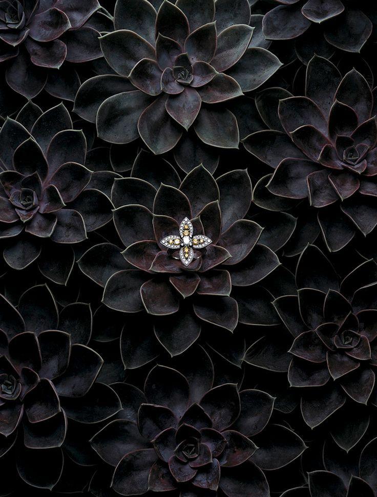 Editorial | Jewellery & Watches | Mitchell Feinberg | #jewellery #plants