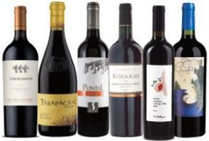 Ihr Genusspaket chilenischen Rotweins für zu Hause!