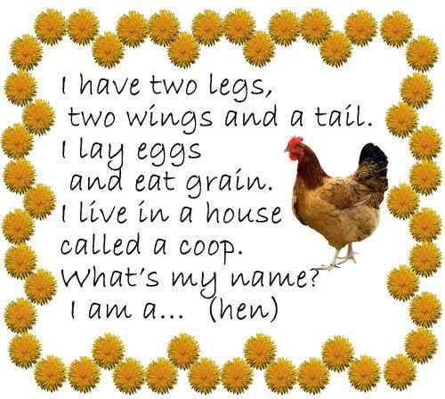 Стишок-загадка про курочку (hen)