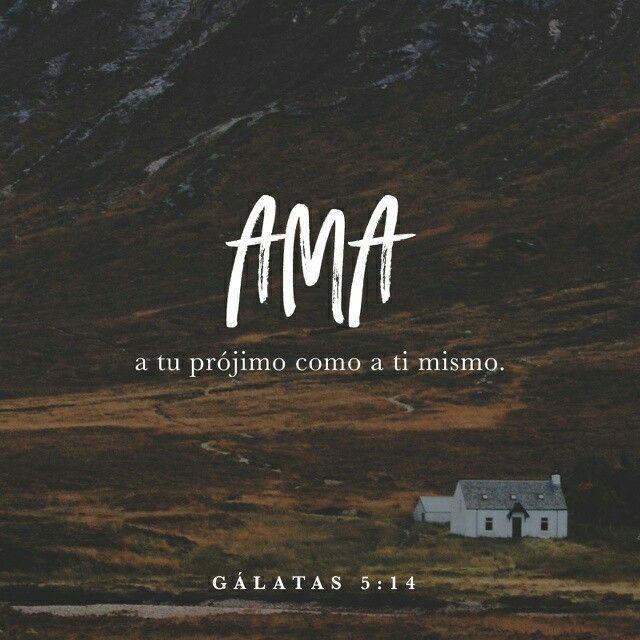 Galatas 5.14 #youversion #versiculos #biblia #bible