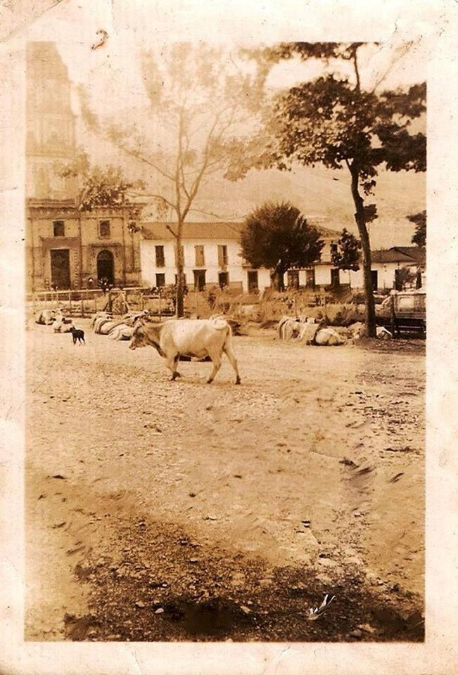 Parque de Caldas Año 1900 publicada por Luis Maria Usma
