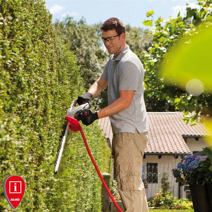 We wrześniu (po raz ostatni w tym sezonie)  przycinamy żywopłoty, które zrzucają liście na zimę.  Zbyt późne przycinanie drzew i krzewów opóźnia ich przygotowanie do zimy, co może skutkować przemarznięciem roślin. http://www.sklepalko.pl/krzewy-pielegnacja/nozyce-do-zywoplotow.html