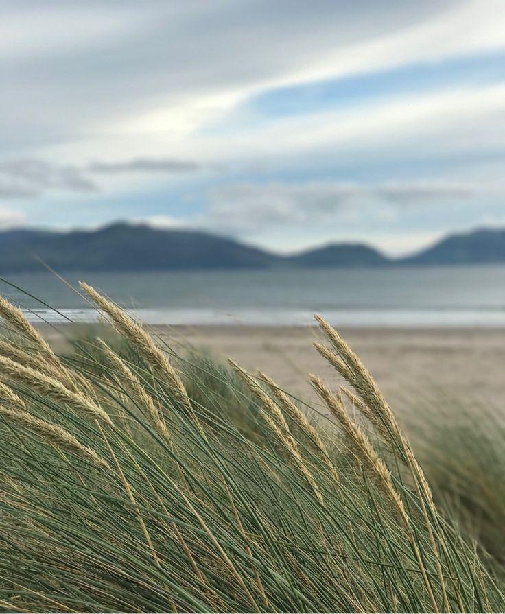 Inch Beach är en 500 km lång sandstrand som ligger på Irlands sydvästra sida. Att komma till havet var helt perfekt! Helt plötsligt blev det lättare att andas