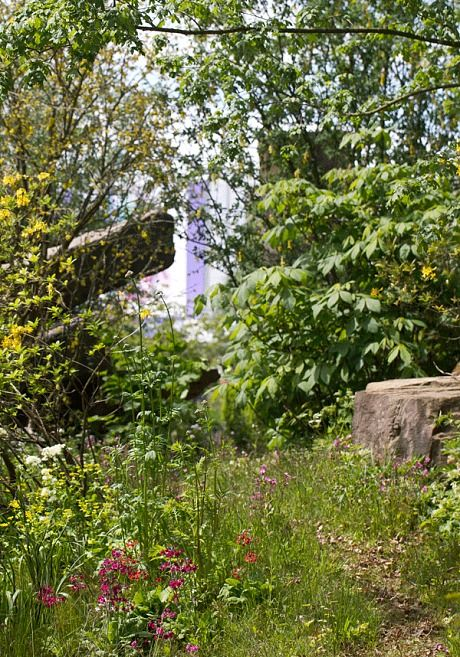 Dan Pearson's BEST IN SHOW garden at the Chelsea Flower Show 2015 - Telegraph