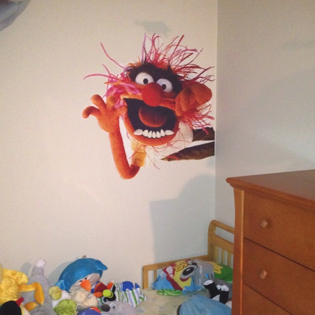Muppets wall graphic by Blik- the kids love it.