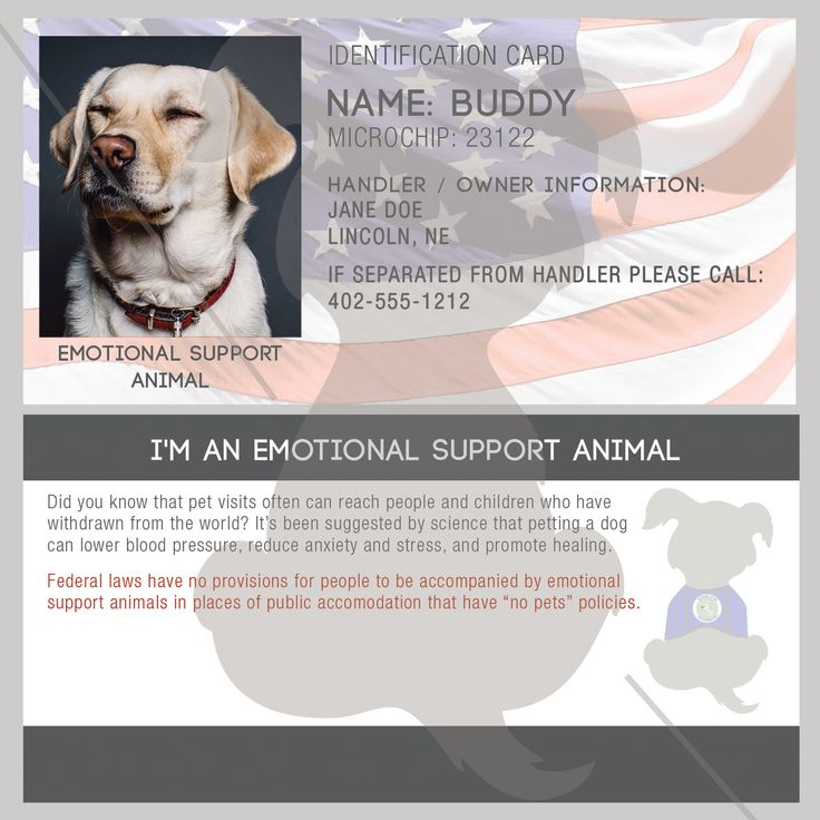 ID Card - Emotional Support Animal