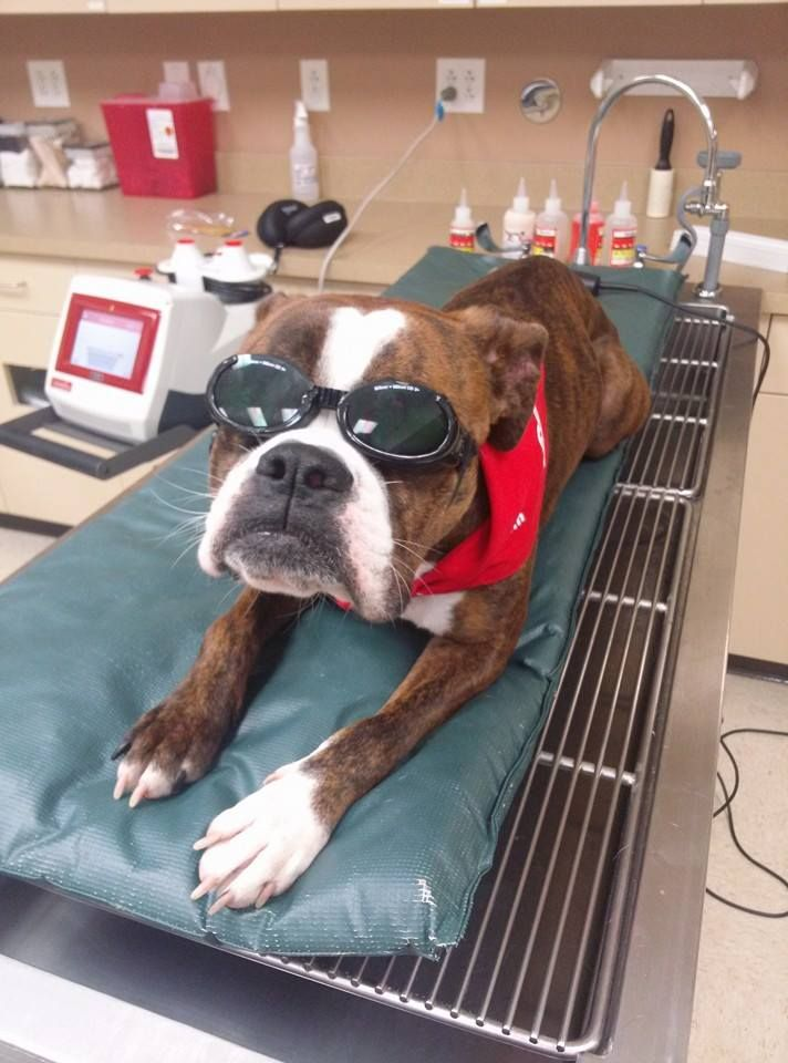 Mo feeling good getting her laser on