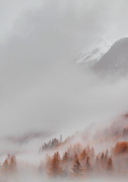 Beautiful NatureMountain Landscapes, Mists Photography, Autumn Nature Photography, Foggy Autumn, Art, Trees, Autumn Fog, Foggy Mountain, Nature Photography Mountain