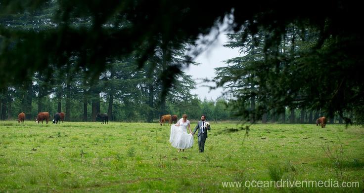 Wedding at Providence in KZN Midlands
