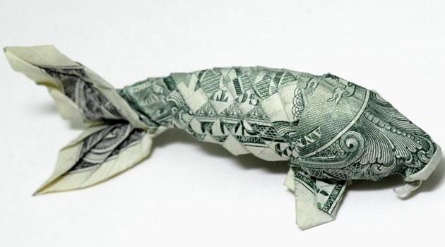dollar bill coi fish