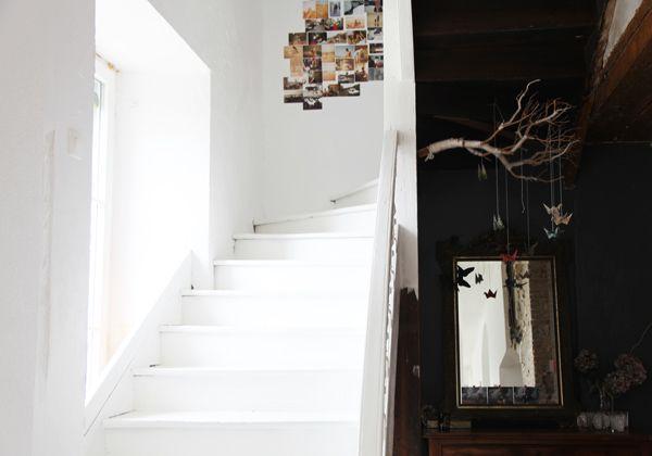 belle branche … @les zigouis