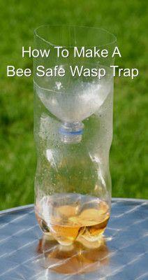Bee Safe Wasp Catcher