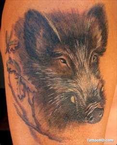 Pig Tattoo Designs