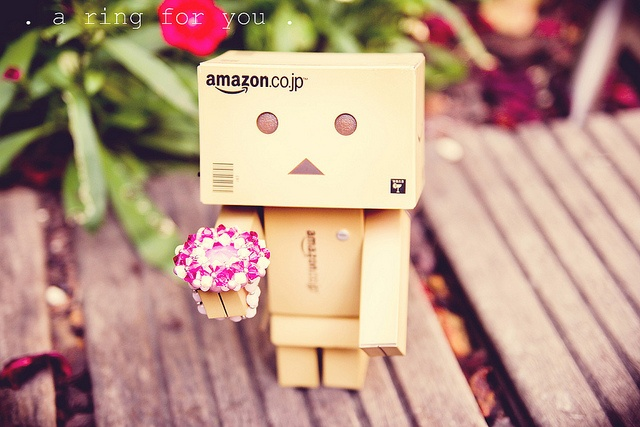 . a ring for you . {P52} #32 Danbo