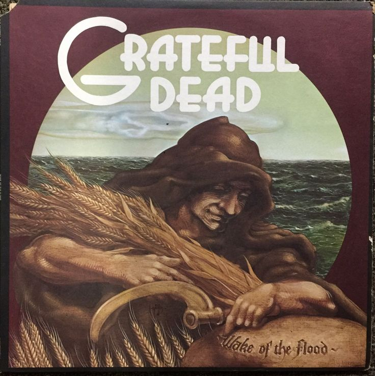 Grateful Dead 1973 Wake Of The Flood Vinyl LP Record Album