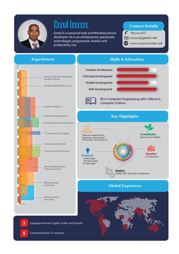 Infographic Resume Prepossessing 14 Best Infographic Resume Images On Pinterest  Infographic Resume