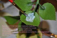 Мастер-класс Лепка МК по лепке розы Часть5-покраска Фарфор холодный фото 2