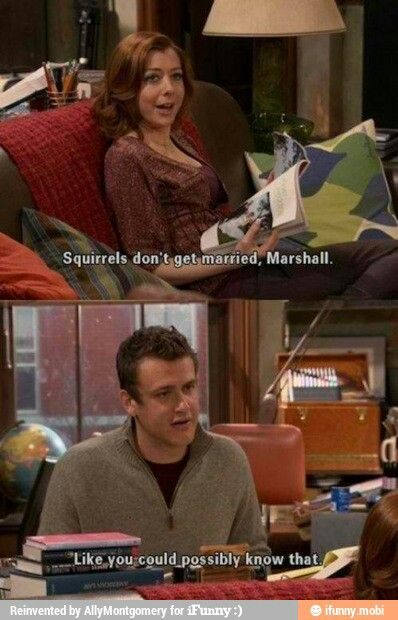 SQUIRREL'S DO GET MARRIED