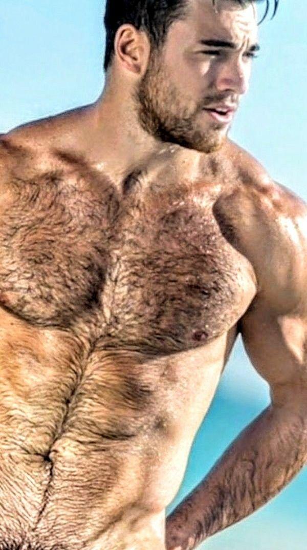 I love hairy chested men