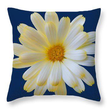 Throw Pillow featuring the photograph Elegant Summer Memory by Johanna Hurmerinta