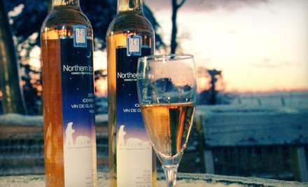 Wine Tour and Ice wine Tasting for Two or Four at The Ice House Winery (Up to 53% Off)