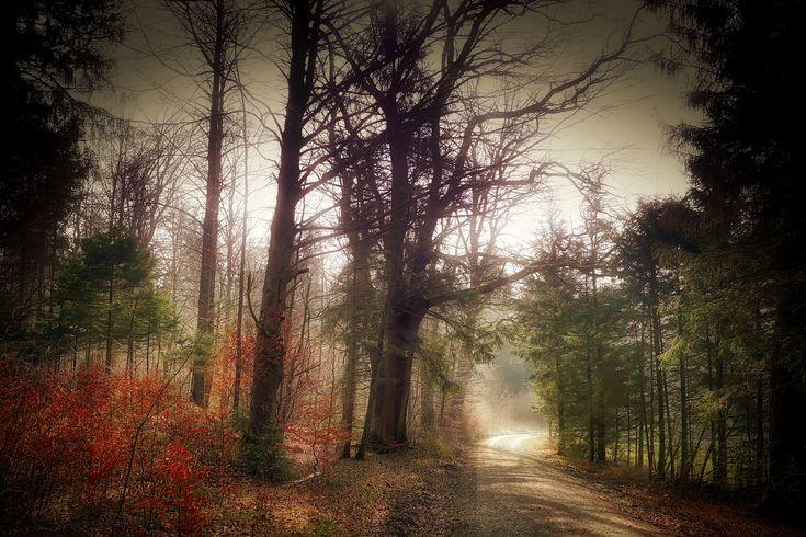 Mystiskt landskap