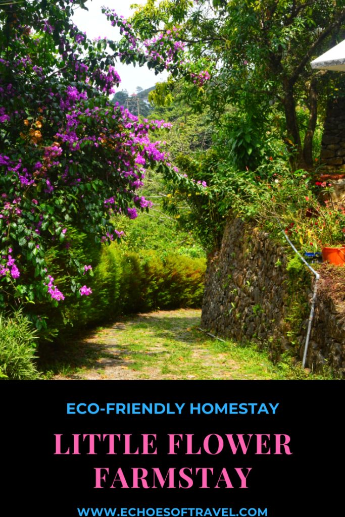 Little Flower Farmstay, Vagamon ECHOES OF TRAVEL Farm