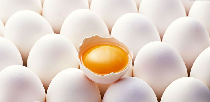 O colesterol é um dos maiores problemas hoje: a maioria das pessoas tende a ter níveis de colesterol acima do máximo saudável – 200 miligramas por decilitro de sangue. O problema com esta situação é que está afetando diretamente o nossa coração; por esta razão, é realmente essencial ter bons hábitos, exercitar e comer alimentos que não aumentam o colesterol. Ovos Os ovos são ricos em colesterol dietético: dependendo do tamanho, a gema pode ter até 185 ...