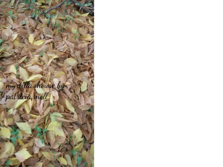 http://hermioneat.blogspot.it/2015/10/autunno-colora.html