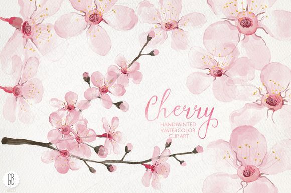 Watercolor cherry blossom, spring by GrafikBoutique on Creative Market