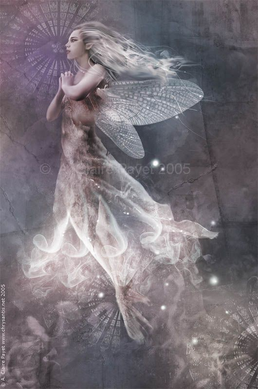 ≍ Nature's Fairy Nymphs ≍ magical elves, sprites, pixies and winged woodland faeries - Fairy Light