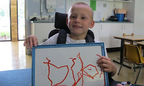 Specialist education for students with a disability.
