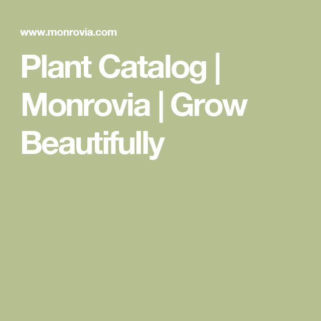 Plant Catalog | Monrovia | Grow Beautifully
